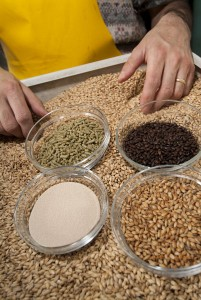 Grains-For-Brewing